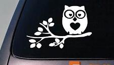 Owl sticker decal car window vinyl College Girl Decorate Kid *D735*