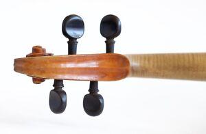 100% old italian violin from NAPOLI GAGLIANO 4/4 violon geige violino 小提琴 ヴァイオリン