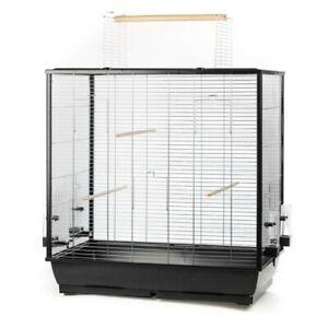 Grand Oiseau Cage Perroquet Canaris Großsittich Avec Freisitz-afficher Le Titre D'origine Avec Une RéPutation De Longue Date
