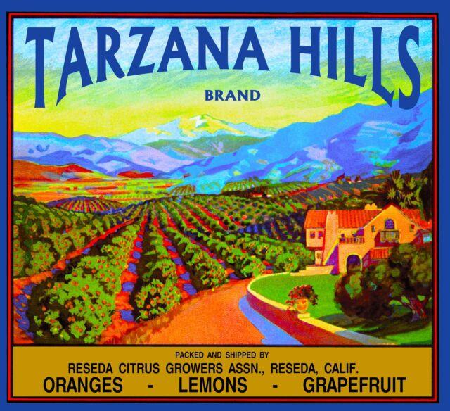 Reseda Tarzana Hills California Vintage Orange Citrus Fruit Crate Label Print