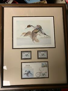 1999-First-of-Nation-Italy-Duck-Stamp-Print-Signed-Michele-Dubini-Pintail-Framed