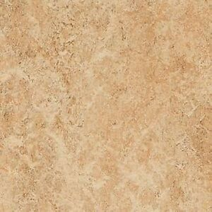 Forbo Marmoleum Real Linoleum Sheet Flooring Natural Lino Shell 3075