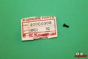 NOS KAWASAKI EX250 ZX600 PAN CROSS SCREW 3X8 PART# 220C0308