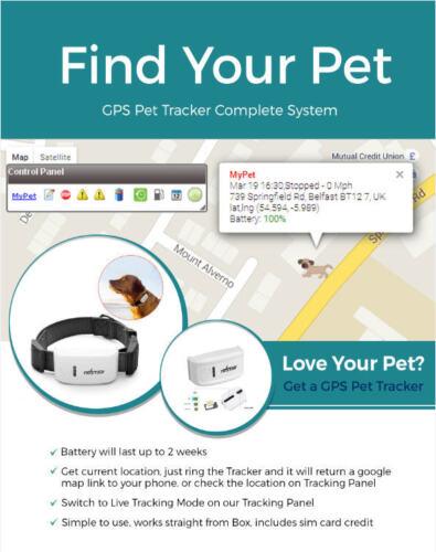 Paquete completo de rastreador de mascotas GPS Rastreador Mini tamaño Sistema Completo Reino Unido Collar Negro