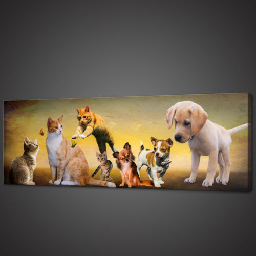 DOGS AND CATS PANORAMIC CANVAS PRINT PICTURE WALL ART VARIETY OF SIZES
