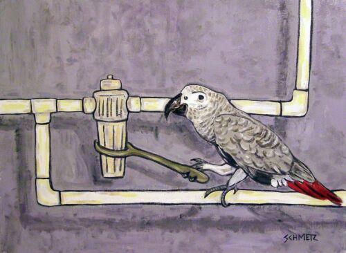 AFRICAN GREY PARROT plumber birds 11x14  art PRINT animals impressionism