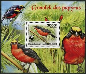 BURUNDI 2011 BIRDS WWF PROTECTION OF NATURE DELUXE SET OF FOUR S/S MINT NH