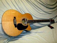 Kirkland electro Acoustic -- APX size