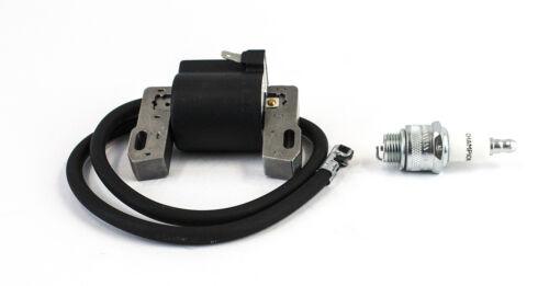Coil /& Spark Plug Fits Briggs 100200 100900 130220-132900 133200 133700 135200