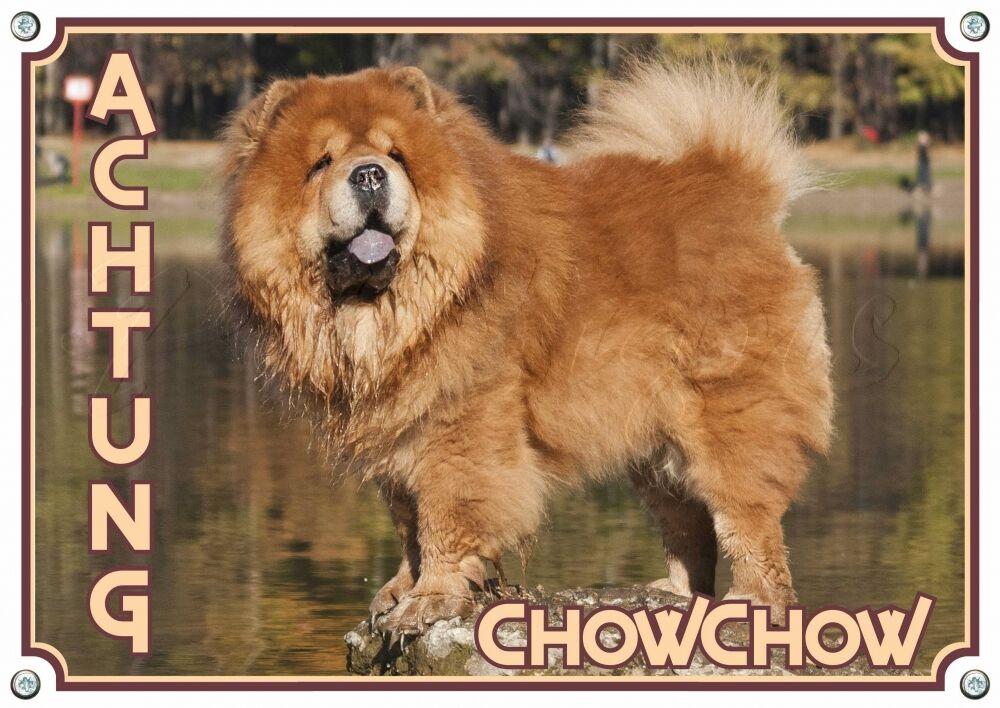 Chow Chow-cani segnaletica-massiccio scudo in metallo - 1,5 mm di spessore-wettermiglioreä