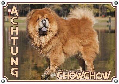Chow Chow - Hundeschild - Massives Metallschild - 1,5 Mm Dick - Wetterbeständig