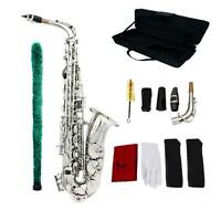 Saxophone Sax Eb Be Alto E Flat Pattern Exquisite With Accessories Kit Case I9d0