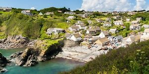 Holiday-cottage-in-Cadgwith-Cove-Cornwall-up-to-two-dogs-welcome