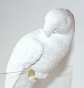 Pappagallo Sebastian Porcellana Uccello con un solco-o Living  </span>