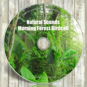 NATURAL-SOUNDS-CD-MORNING-FOREST-BIRD-CALL-RELAXATION-amp-SLEEP-AID-MEDITATION