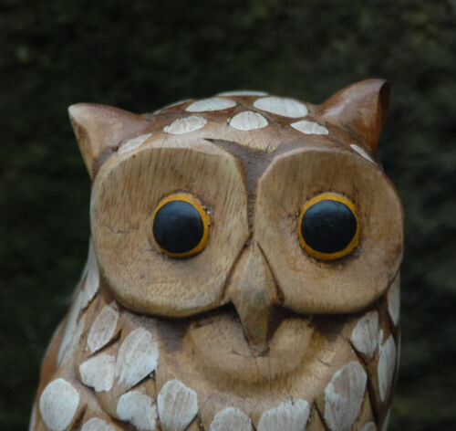 Wooden Owl Carving 23cm Sustainable Hard Wood hand painted detail