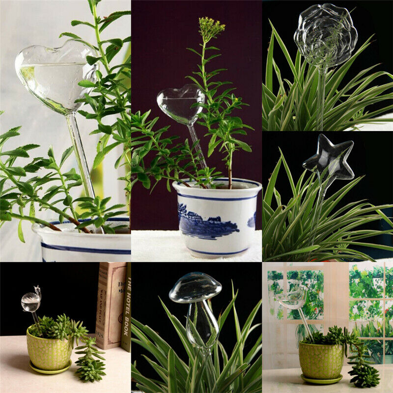 Plant Watering Devices Clear Glass Water Feeder Home Gardening Tools 6 Designs