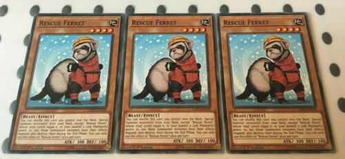 Common Card LEHD-ENC08 3 x Rescue Ferret 1st Edition  YuGiOh NEW