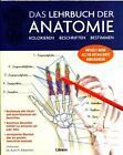 Das Lehrbuch der Anatomie von Kurt H. Albertine (2016, Kunststoffeinband)