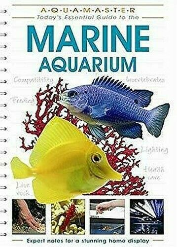 Marine Aquarium von Hayes, Tim, Lougher, Tristan, Mills, Dick