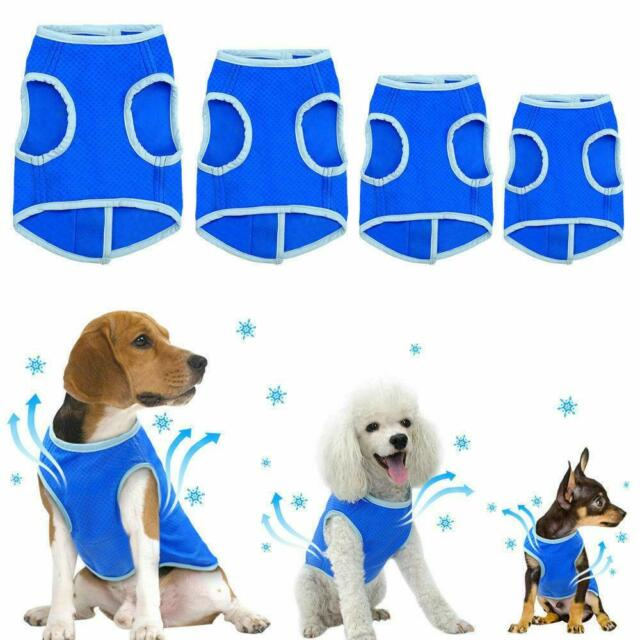 Crufts Cooling Vest Extra small - Large