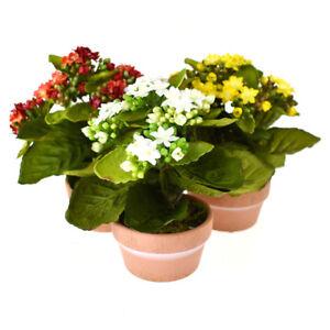 Artificial Silk Kalanchoe Flower Pot, 8-Inch