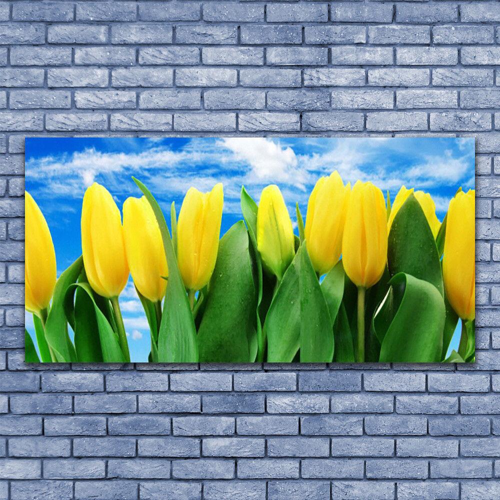 Tableau Tableau Tableau Impression Image sur Plexiglas  140x70 Floral Tulipes df9d5d