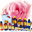 3ml-Essential-Oils-Many-Different-Oils-To-Choose-From-Buy-3-Get-1-Free thumbnail 82