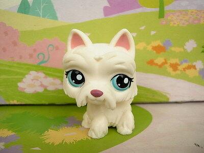 LITTLEST PET SHOP(1100)-White Scottie Dog #1598 Action Figure Toys