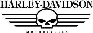 2-x-Harley-Davidson-Skull-Viele-Farben-Grose-20-cm-x-7cm-ANSEHEN