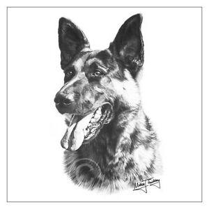 image is loading mike sibley german shepherd dog breed greeting card