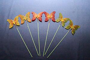 Schmetterlinge Blumenstecker Blumentöpfe oder Vasen, Set 6 Stück, TOP Kreation!
