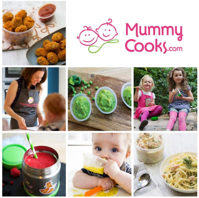 Mummy Cooks 20 90ml BPA Free Plastic Reusable Containers for Freezing Baby //