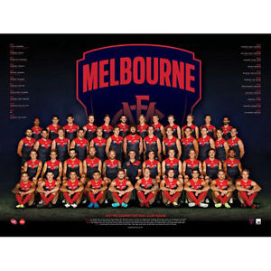 AFL-2017-Team-Melbourne-Demons-POSTER-60x80cm-NEW-Aussie-Football-League-Players