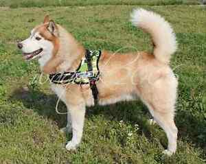 Green-Dog-Harness-S-M-L-XL-padded-extra-Big-large-medium-small-heavy-duty-Husky