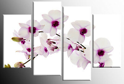 WHITE PURPLE ORCHIDS CANVAS ON WHITE WALL ART PICTURE SPLIT MULTI PANEL 100cm