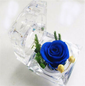 Wedding-Clear-Crystal-Ring-Earring-Storage-Display-Jewelry-Case-Organizer-GO9