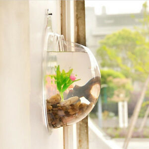 Home Decoration Pot Wall Hanging Mount Bubble Aquarium Bowl Fish Tank Ebay