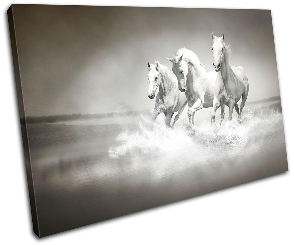Herd Horses Animals SINGLE Leinwand Wand Kunst Bild drucken
