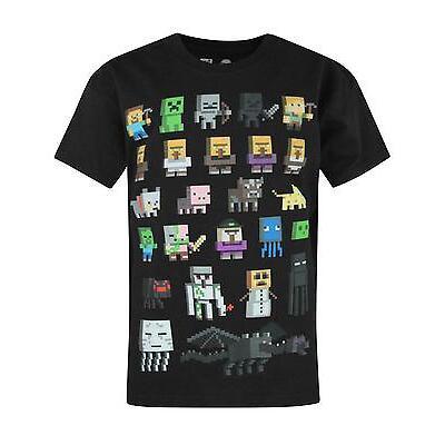 Official Minecraft Sprites Boy's Black T-Shirt