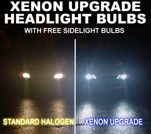 Xenon upgrade bulbs Citroen C3 C4 C8 XM Evasion H1 501