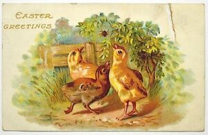 Old-Easter-greetings-postcard-antique-divided-back-chick-spider-Germany-1909
