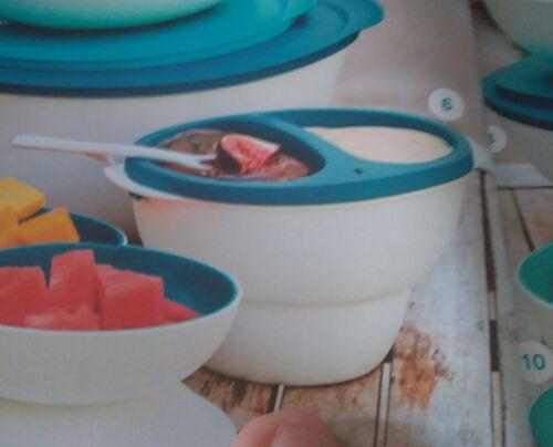 tupperware fondue chocolat nouveau coloris