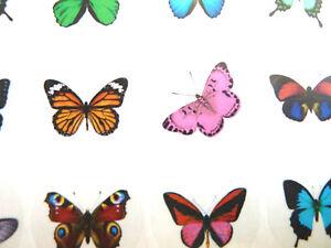 CIRCULAR-pegatinas-de-mariposas-colores-Redondo-Etiquetas-para-manualidades-4