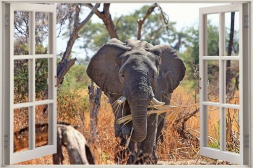 3D Effect Window View Elephant Wild Africa Tusks Wall Sticker Poster M1-113