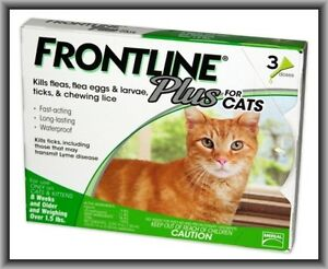 Frontline-Plus-Flea-amp-Tick-Control-for-Cats-Kittens-Over-1-5-lbs-3-Doses-Box