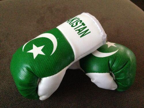 PAKISTAN FLAG Mini Boxing Gloves