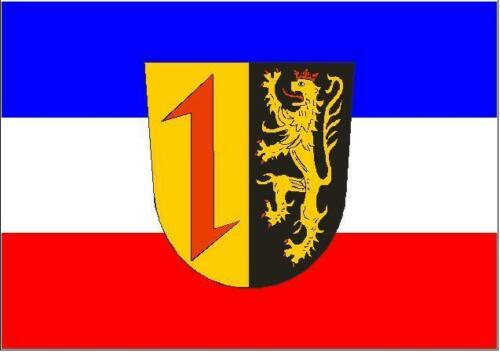 Fahne Flagge Mannheim 20 x 30 cm Bootsflagge Premiumqualität