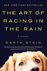 The Art of Racing in the Rain by Garth Stein (Paperback / softback)
