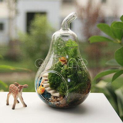 1PC Home Decor Pear Crystal Vase Planter Terrarium Container Hydroponic Pot